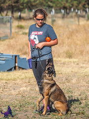 P7150206 (Songdog Studios) Tags: green dog neumond womensretreat 2017 k9 schutzhund ipo