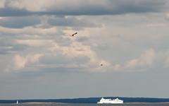 Stena Line (Siw Renate) Tags: boat ocean nikkor