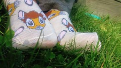 Adoerable (mistresssocks) Tags: feet socks socklove footwear female foot footfetish fetish sockfetish socksoftheday sexysocks closeup outside anklesocks ankle pattern daily