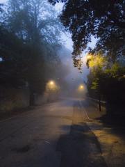 Misty morning street (alisonsage1) Tags: mist street cobbles streetlights earlymorning fog lights mistymorning aberdeen thechanonry