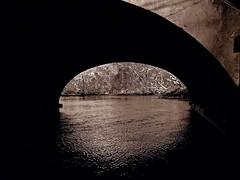 Water Under The Bridge (Professor Bop) Tags: sepia monochrome bridge water reflections shimmering professorbop drjazz olympusem1 newhavenconnecticut eastrockpark millriver mosca