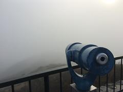 Peering into the mists. (mr0grog) Tags: twinpeaks iphone sanfrancisco california unitedstates us