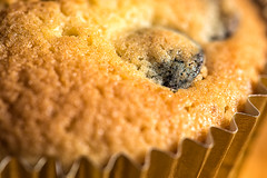 let them eat... (LoomahPix) Tags: flickr macromondays brown cake closeup cupcake food golden macro macrophotography queen queencake sweet 11 7dwf