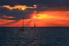 Sailing at sunset - Tel-Aviv beach (Lior. L) Tags: sailingatsunsettelavivbeach sailing sunset telaviv beach sailboat travel travelinisrael telavivbeach israel silhouettes clouds sea seascapes water light cloudysunset