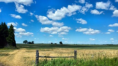 Northumberland County Field (duaneschermerhorn) Tags: sky clouds blue white trees green golden field fence post gate