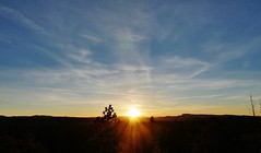 Sunset In Bryce Canyon National Park I (Susan Roehl) Tags: nationalparkstour2017 brycecanyonnationalpark paunsauguntplateau utah usa sunset ridge sky outdoors sueroehl panasonic lumixdmcgh4 35x100mmlens handheld westward coth5