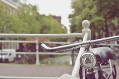 Delft (vintage) (~Miel) Tags: netherlands nikond5200 nikkor nikkor50mm nikon bike holland olanda dutch holidays summer estate rain pioggia gocce raindrops delft vintage zomer