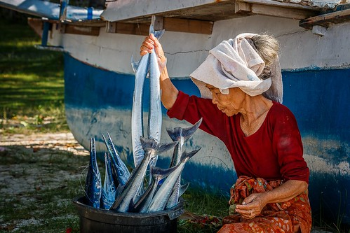 Fisherman's Wife with Barracudas