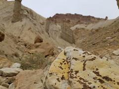 Spotted Rock (JuliaVergari) Tags: nature desert colorado mountgarfield outdoors hiking