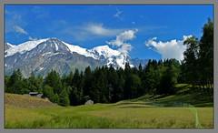 Troupeau à Charousse (myvalleylil1) Tags: france alpes montagne mountain hautesavoie chamonix montblanc