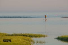 _MG_6825-2 (Alex Chilli) Tags: massachusetts usa america cape cod landscape