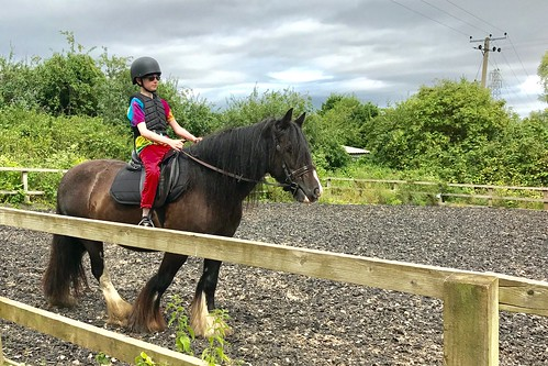 Horseriding lessons
