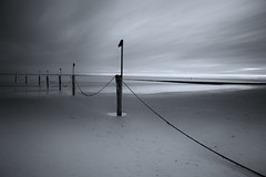 Ney1 (Joachim Wehmeyer) Tags: norderney nordsee