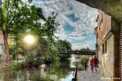 BAMBERG - Klein Venedig im Gegenlicht (GerWi) Tags: bamberg sonne gegenlicht fz1000 hdr kanal kanäle klein venedig