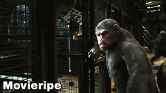 Prison Break - Rise of the Planet of the Apes Movie Clip (MovieRipe) Tags: prison break rise planet apes movie clip