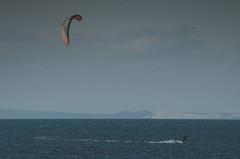 Project365-119 (michellebain1) Tags: kitesurfers wellingtonpoint wello australia windy water ocean moretonbay bay kitesurfing kitesurfer