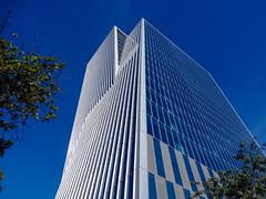 Modern architecture. (Carlos Vieira.) Tags: modernarchitecture riodejaneiro blue trees skyblue skyscraper building perspective