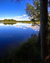 McCollum Lake 2009 (hz536n/George Thomas) Tags: 2009 cs3 ef70200mmf4lusm michigan mio photomatix september summer canon5d hdr upnorth canon copyright nik lake sky reflection tree smörgåsbord