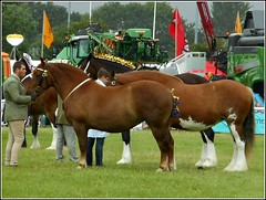 Driffield Agricultural Show .. (** Janets Photos **) Tags: uk agriculturalshows driffield eastyorkshire events showgrounds horses