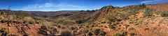 Larapinta Trail Panorama-7