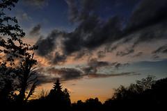Sunset over Chesham Bois (Jonathan Goddard1) Tags: pentax k1 sunset landscape trees clouds sky branches leaves summer seasons dfa 2470mm