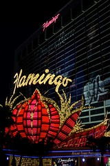 Vegas Baby! (AshlandT) Tags: lasvegas vegas highroller travel cityofsin gambling casinos citylights neon neonlights signs hotels theflamingo flamingo