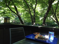 Lunch on the Deck. (melystu) Tags: food tray summer alfresco garden lamp deck porch lunch plate salad fruit water glass frosty meal ucb berkeley facultyclub campus