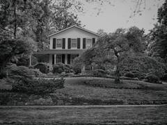 House, Niagara-on-the-Lake (duaneschermerhorn) Tags: house home estate yard lawn black white blackandwhite blackwhite bw noire noir blanc blanco schwartz weiss