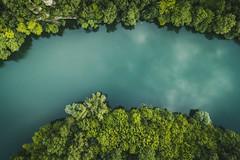 L'Hérault (davidparenteau) Tags: rivière nature paysage eau forêt drone beautyinnature hérault montpellier languedocroussillon occitanie dji explore