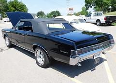 1965 GTO black=2 (THE HALENIZER) Tags: 1965 gto