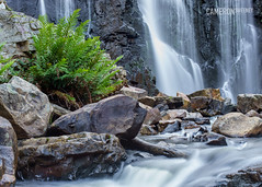 Mackenzie Falls (cameron_sweeney) Tags: au aus australia australian grampians grampiansnationalpark landscape mackenziefalls sony sonya7r vic victoria wwwcameronsweeneycomau minoltamd28mmf28 minolta waterfall