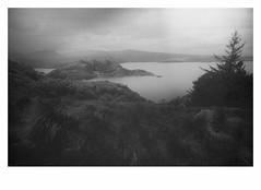 The Great Wilderness # 2 (bruXella & bruXellius) Tags: thegreatwilderness blackwhite monochrome grain grainy torridon lochtorridon glentorridon highlands northwesthighlands scotland uk