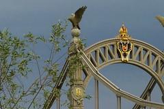 P1090356 Grenzbrücke  /Border / Bridge (Traud) Tags: deutschlandösterreich germanyaustria bavariasalzburg bridge brücke grenze border salzach
