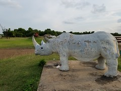 Stopping at the Eclectic Menagerie Park at Texas Pipe & Supply in Houston,  TX. (martymar2577) Tags: sculpture tx houston art rhinoceros hippo hippopotamus stegosaurus