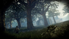 Forests of Núrn (Gothicpolar) Tags: middle earth shadow mordor game pc scene scenery screenshot shot monolith studios lotr