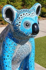 Oceania (Gillian Everett) Tags: hello koala portmacquarie nsw australia sculpture