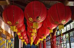 Lanterns (msuner48) Tags: d750 acr5 cs4 lanterns museum chinatown sanfrancisco frankwongexhibit topazlabs nikcollection nikonafs24120mmf4ged