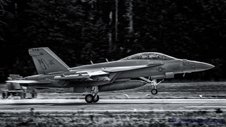 VAQ-129 VIKINGS IN BLACK & WHITE AGAINST THE WHIDBEY TREES