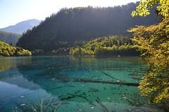 Jiuzhaigou (kaboem) Tags: jiuzhaigou tibetan naturereserve songpan sichuan china bluelakes snowpeaks valley waterfall unesco unescoworldheritagesite biospherereserve aba giantpanda pearlshoalwaterfall