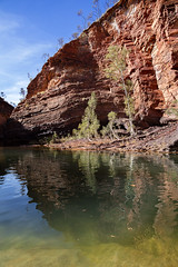 Karaijni_Hamersley gorge_7674