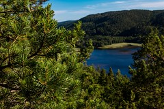 Billede 18-07-2017 19.07.29 (OfficialTibalidge) Tags: halden landscape norway water forest canon tamron beautiful travel colors lightroom