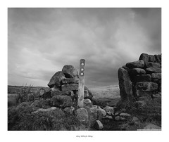 Any Which Way (Rory Prior) Tags: acros bronica calderdale erringdenmoor mytholmroyd sqai yorkshire drystone footpath fujifilm mediumformat moor neopan path stormy summer track wall