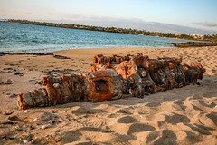 Discarded Beauty (Rennett Stowe) Tags: engine ignorant oceantrash sea beach crap sand metal discarded beautifultrash trash pollution rust rusting rusty crankshaft cardifferential differential rustingmetal sustainability sustainable colelge college universityofhawaii bigislandofhawaii coast californiacoast coastalcommission sandtrash beachtrash theenvironment recycle recycling recyclinglaws creativecommons redmetal steel detroitsteel automotiveindustry industry heavyindustry trashart orange orangerust alloy canon canoneos5dmarkiii hawaii stateofhawaii puakohawaii puako thrownaway junk junkart beautifuljunk nasty blight ugly disrespectful idontcare environmentallaw environmentallaws healthandsafetylaws airplanecrankshaft layingonthesand beauty weirdbeauty oddbeauty deformed occidation occidating modernamerica throwawaysociety