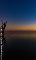 IMG_5552 (biglaptogs) Tags: barmera lakebonney riverland sa states sunsetsunrise