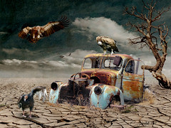 Road Kill (clabudak) Tags: road kill vultures truck rusted desert landscape flying