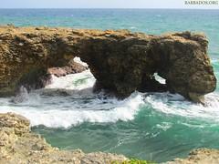 Rugged Beauty of Barbados (www.Barbados.org) Tags: barbados rugged northcoast rockformations