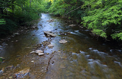 North Fork of the Cherry River (ashockenberry) Tags: river cherry north fork nature naturephotography landscape flow current west virginia