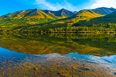 Refection in a Lake (lgflickr1) Tags: alaska lake landscape mountains water green refection trees summer goldenlandscape