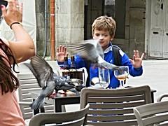 Invasión aérea (Bonsailara1) Tags: plazadelaconstitución vigo pontevedra galicia spain españa paloma dove child niño terraza terrace