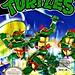 # 22 - Teenage Mutant Ninja Turtles